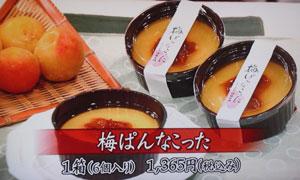 ちちんぷいぷい 梅パンナコッタ