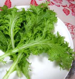 無農薬野菜のミレー・わさび菜
