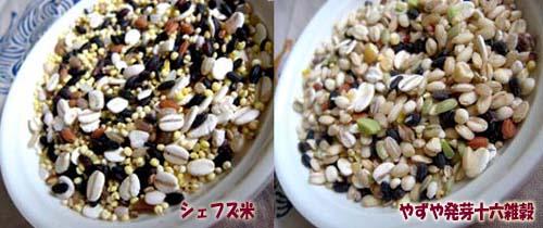 シェフズ米とやずや発芽十六雑穀