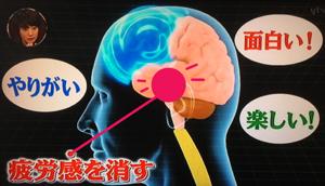 疲労回復の食べ物と睡眠の質を上げる方法(世界一受けたい授業)